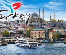 Türk Tanıtma Fonu Projeleri ve Proje Desteği